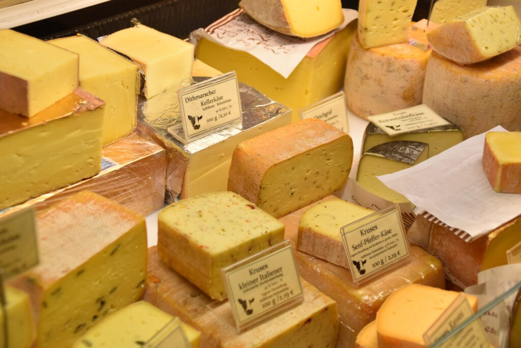 Processing milk into cheese dramatically reduces its lactose content.