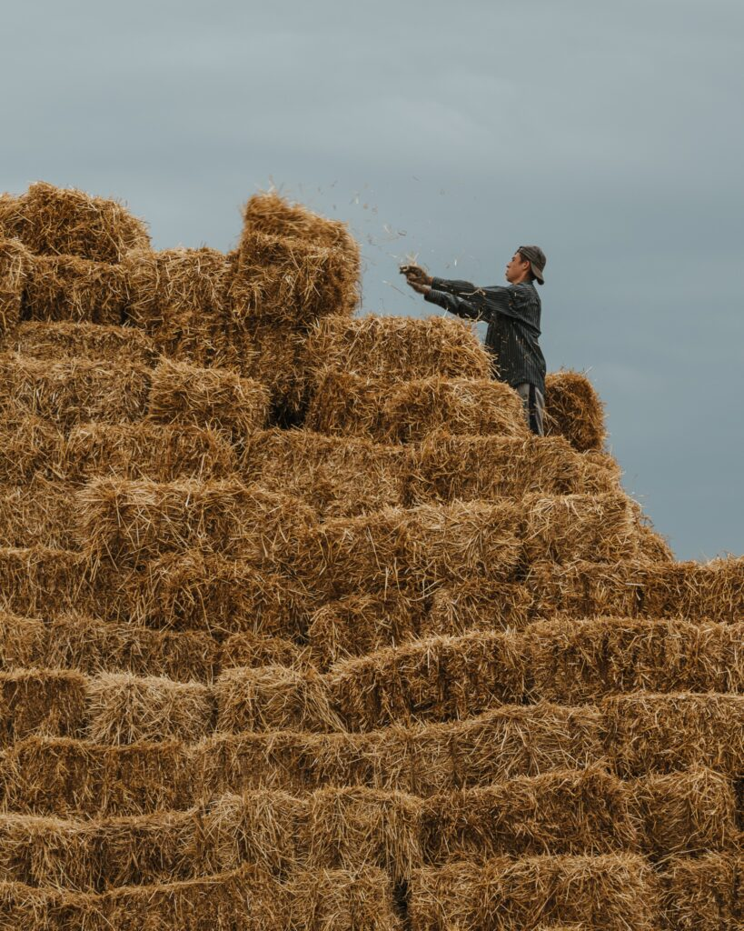 Farm safety includes safe storage. Falling bales or collapsing haystacks can be deadly.